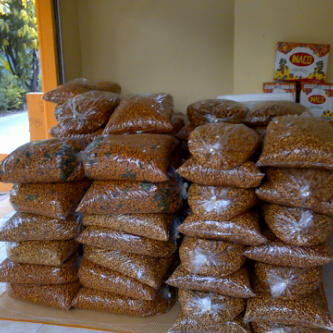 Supplier Kacang Mete Murah