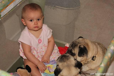 funny_picture_baby_with_dogy