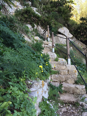 The Mediterranean Steps in Gibraltar