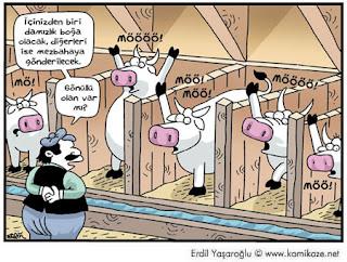 inekli karikatür 2