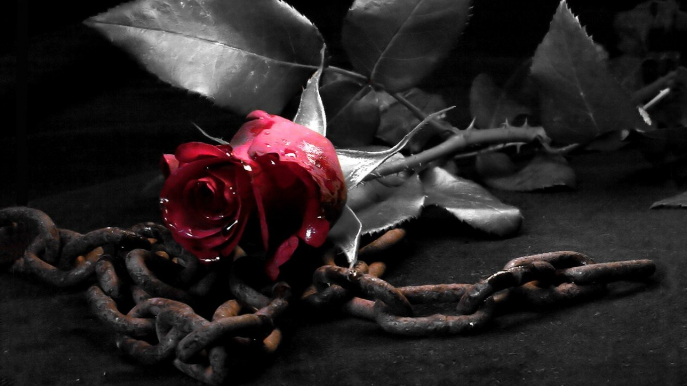 Cool   Wallpaper Horse Gothic - dark_metal_gothic_chains_roses_1366x768_45016  Graphic_917543.jpg