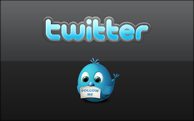 Twitter Logo and Cute Twitter Bird Mascote Follow Me HD Desktop Wallpaper