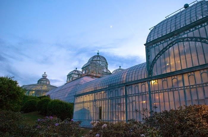 "<img src=""royal-greenhouses.jpg"" alt=""royal green house"">"