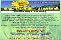 Aktiva Slatina