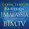 1Malaysia TV
