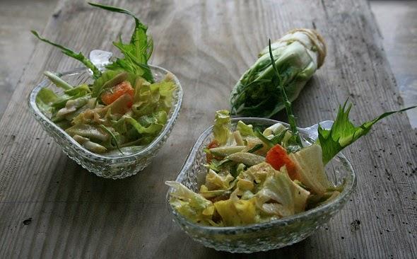insalata di puntarelle con vinaigrette allo zenzero