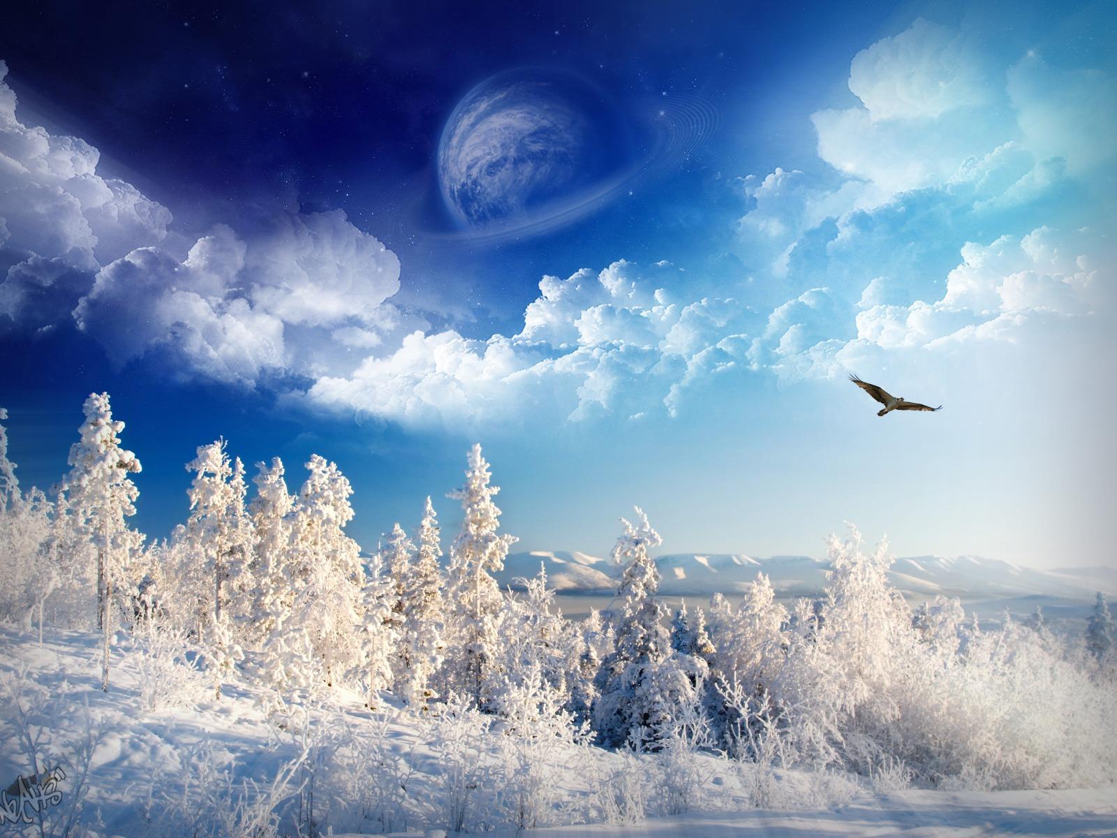 http://3.bp.blogspot.com/-6xLfNT8jluI/Toa_PVX-BfI/AAAAAAAAAKo/PpA0vzXHvMA/s1600/wallpaper_nature_winter+3.jpg