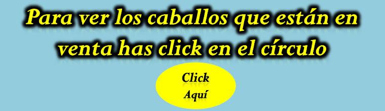 LINK VENTA DE CABALLOS