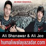 http://www.humaliwalayazadar.com/2015/10/ali-shanawar-ali-jee-nohay-2016.html