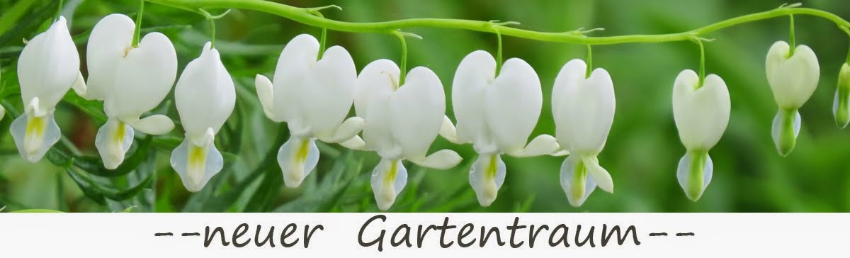 -neuer Gartentraum-