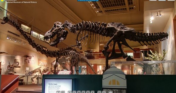 Smithsonian National Museum Of Natural History Panoramic Virtual Tour