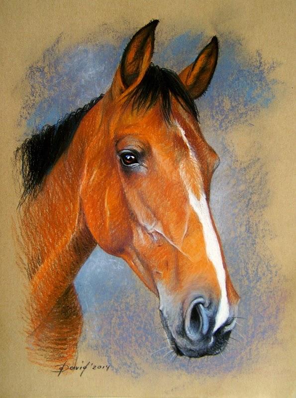 Pferdeportrait vom Foto, Pastell / Papier