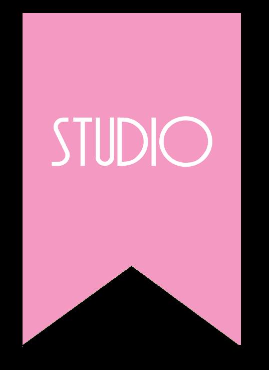 Studio Reveal