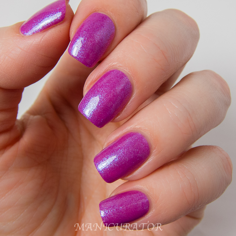 Superchic_Lacquer_The_Gaslighted_Spring_2014_Fuchure_Drive_Me_Insane