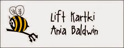 http://diabelskimlyn.blogspot.nl/2014/10/lift-kartki-ania-baldwin.html