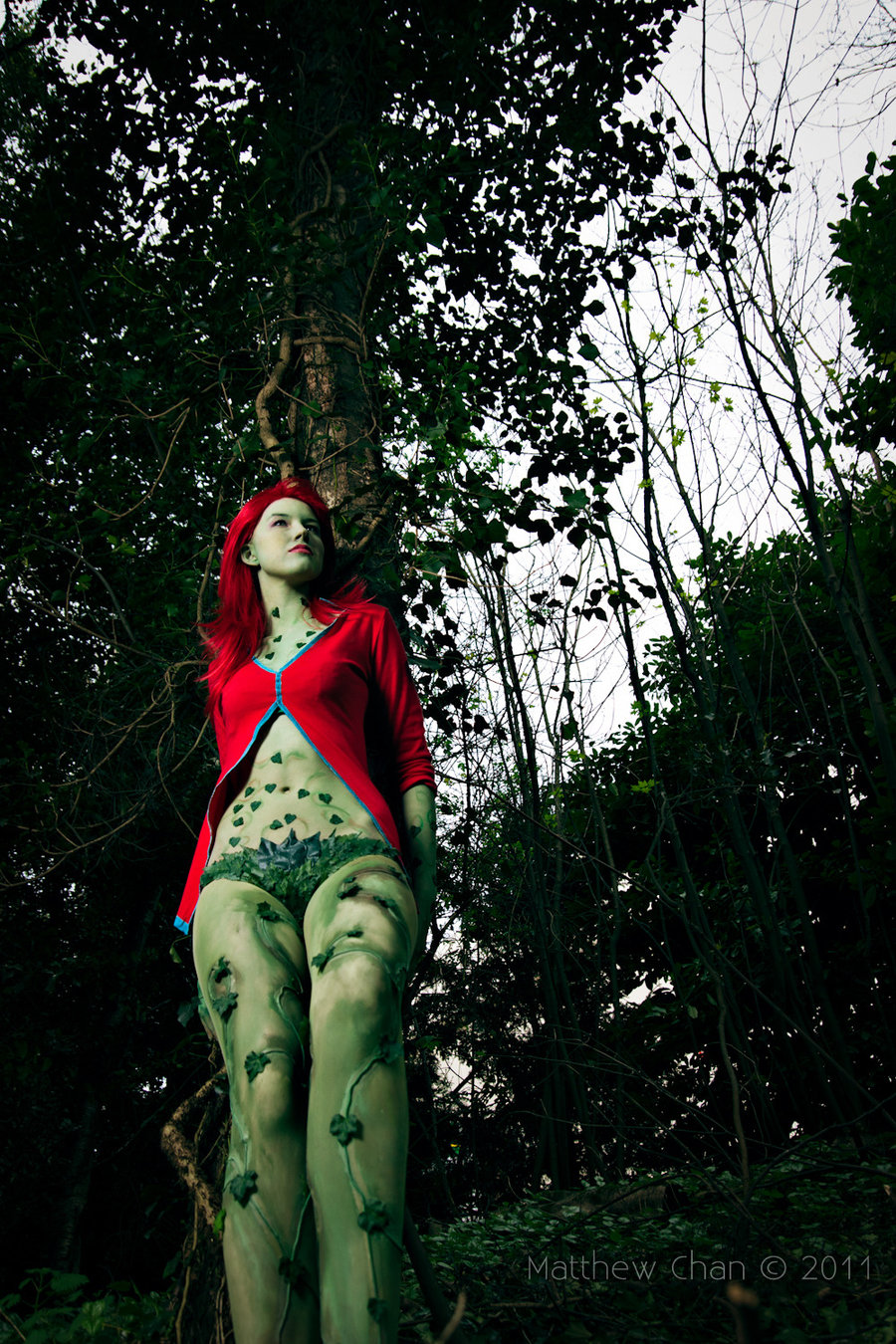 Poison Ivy Batman Comic Costume A Little Thing Called ...