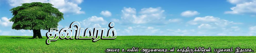 தனிமரம் நேசன்