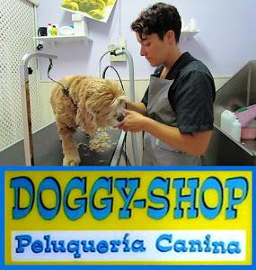 Peluqueria Doggy-Shop Boadilla del Monte