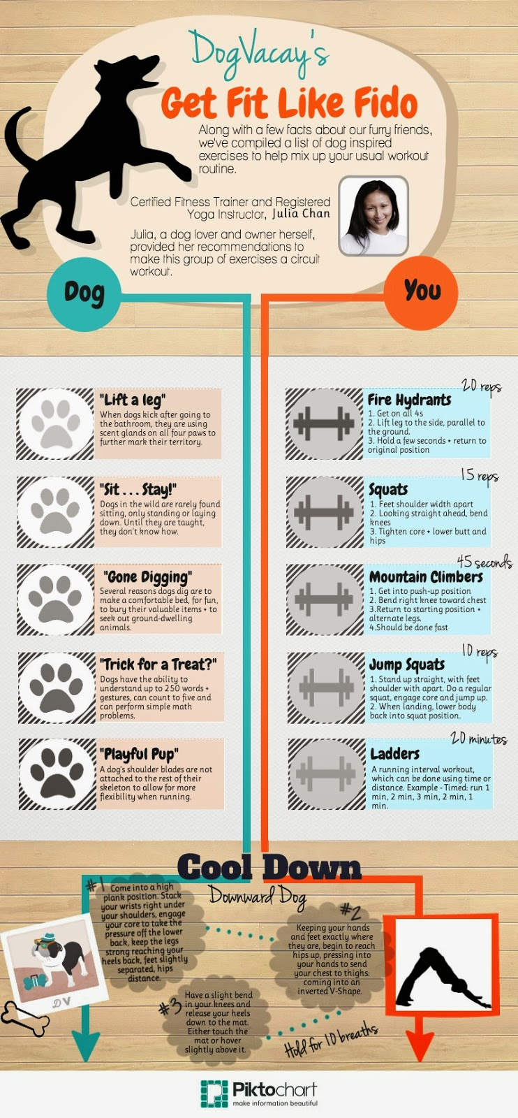 Dog Vacay Get Fit With Fido Infographic