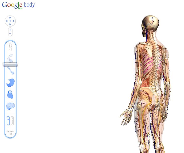 Body Browser y WebGL | ActivInspire