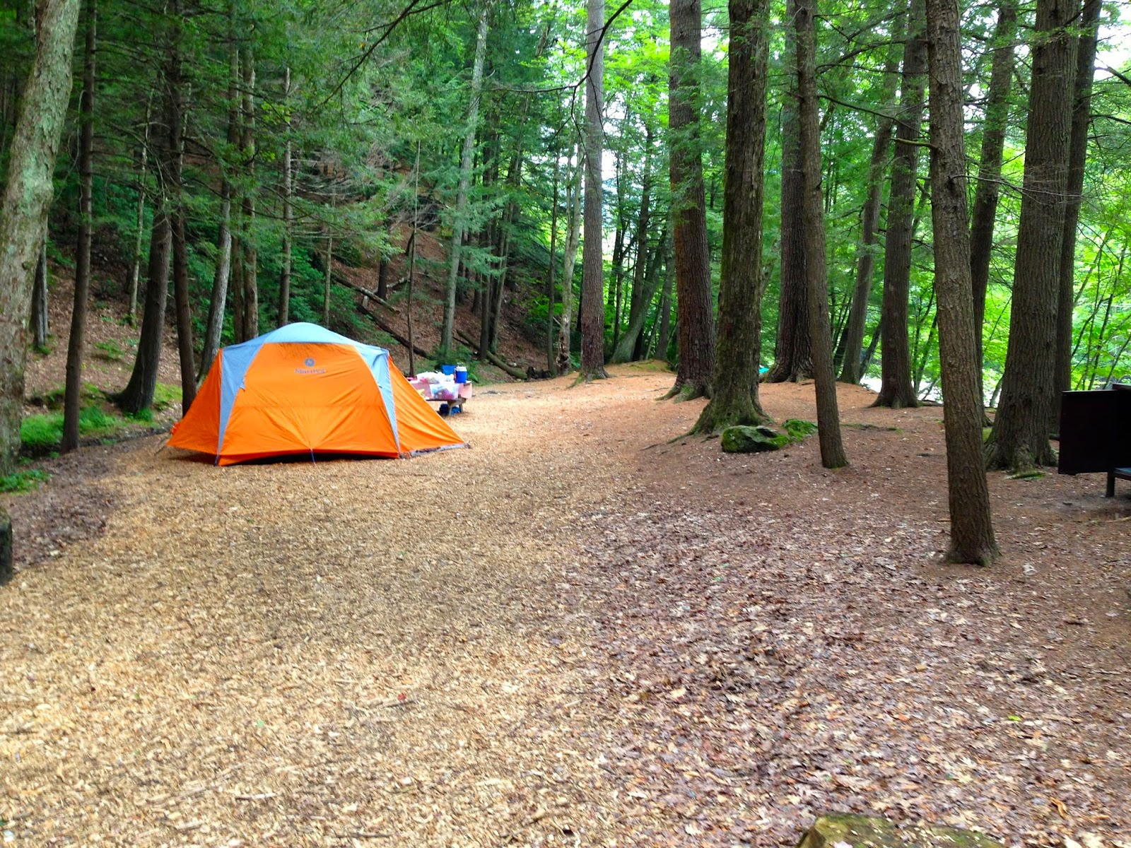 Velophoria A Weekend at Mohawk Trail State Forest