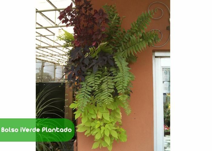 https://www.kichink.com/stores/jardin-vertical