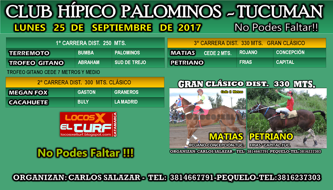 25-09-17-HIP. PALOMINOS-PROG.
