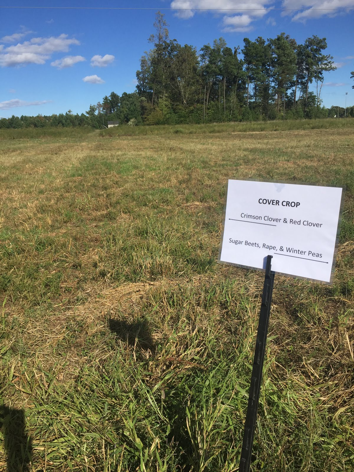 williamsburg community growers no till cover crops