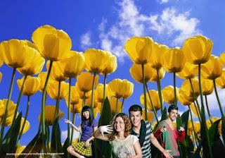 Fundo de tela dos Morangos com Açucar a Dançar em wallpaper Tulipas Flores
