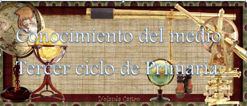 BLOG CONOCIMIENTO DEL MEDIO PINOSIERRA