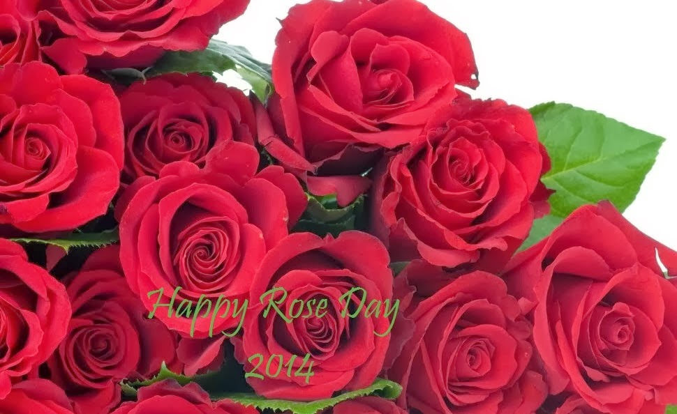 Happy Rose Day 2014 Wallpapers
