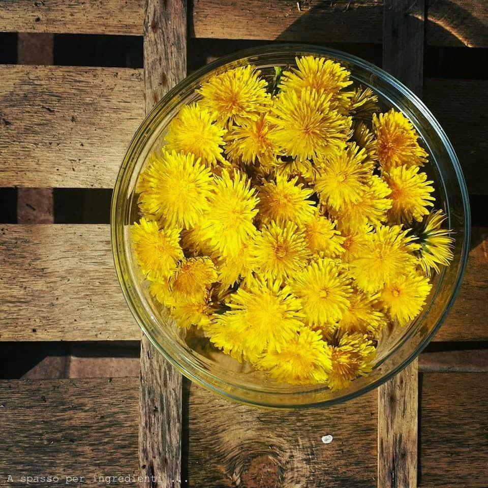 castellane ai fiori di tarassaco