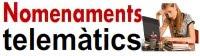 CCOO Nomenaments telemàtics