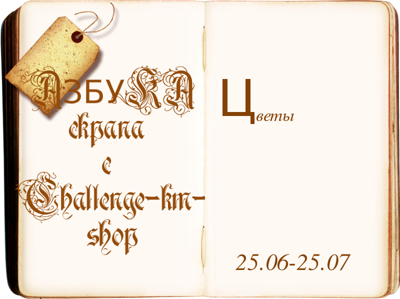 http://challenge-km-shop.blogspot.de/2014/06/2507.html