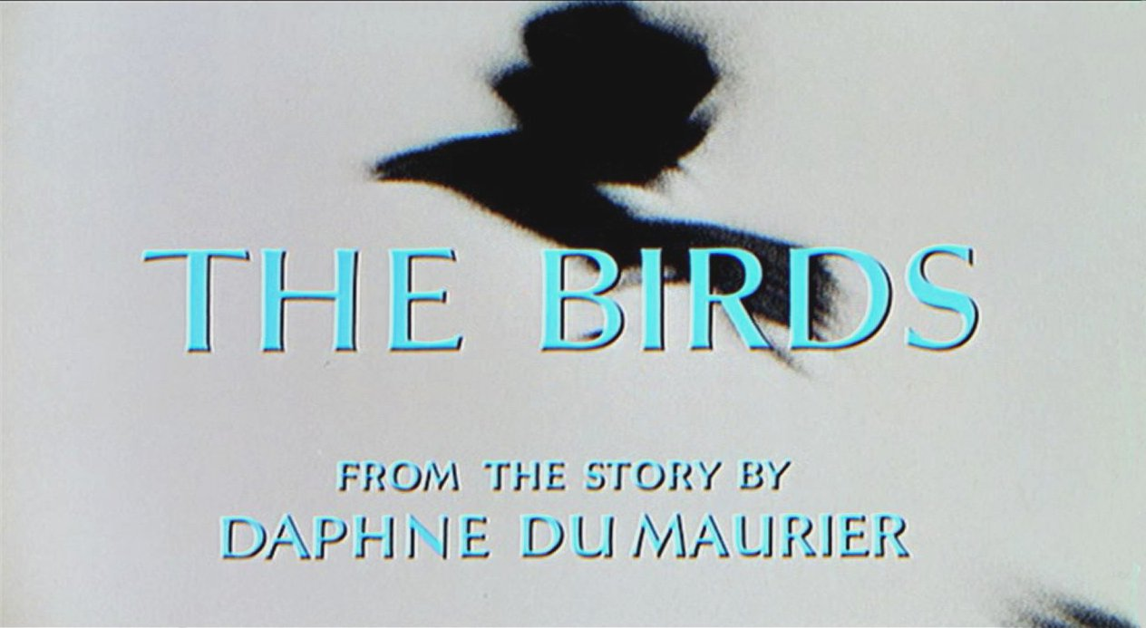 the birds jpg zap essay institute art