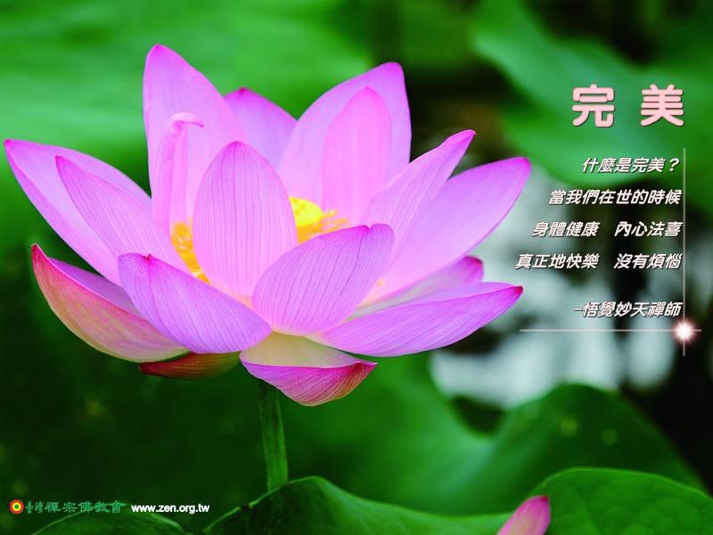 等到哪一天大家真正見到自性的時候,你會很高興,跟彌勒佛一樣,原來就在這裡,向外找,向外求外面並沒有佛,在裡面無所求,心就是佛。修禪就是修心,所以禪就是佛,沒有禪就沒有佛,所以佛離不開禪也離不開心。藉由六組慧能大師的修行成佛因緣,可以對於修禪有一個正確的觀念來開悟,修禪到底是修什麼禪?是修大般若禪、大智慧禪,是讓一切世間法圓滿,一切法界都能夠成為淨土來利益眾生,讓一切眾生跟我們一起成就,都能夠到達彼岸,見到佛土。不管你是佛教的信徒也好,基督教的信徒也好,都有自性「本有的自性、本有的靈性。」不管你用什麼的字眼來形容,都是一樣的。所以很多人區別宗教,排斥異教,在我們修禪來說,一切宗教都是一樣的,只不過有些宗教的教義勸人為善,有些宗教的教義勸人得到智慧。其實是要讓沒有慧根的人,先讓它圓滿善根,等有了善根以後再來圓滿慧根,而善根、慧根圓滿就能夠見到自性、法性、佛性,找到本來的自己,就能「明心見性、見佛成佛。」  摘錄自悟覺妙天禪師,《禪的造化力》,p172,禪天下出版