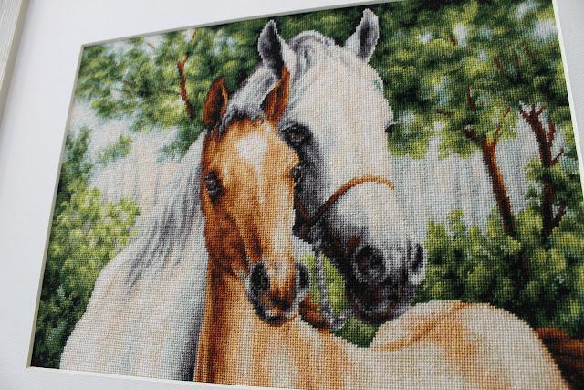 Luca-S лошади