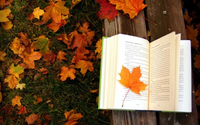 Песню желтые листья клавиши души