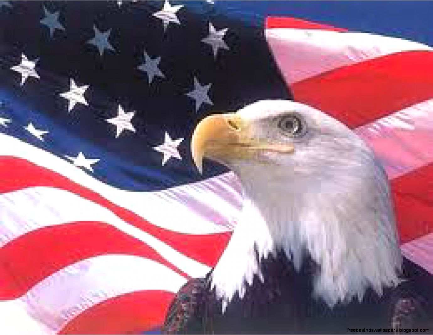 Usa Flag And Eagle Picture