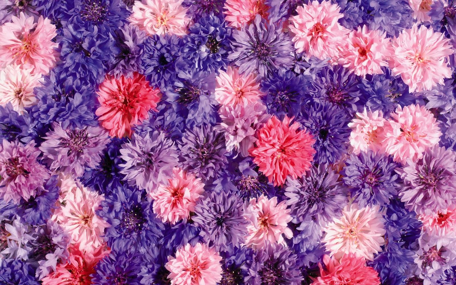 Flower Art Background