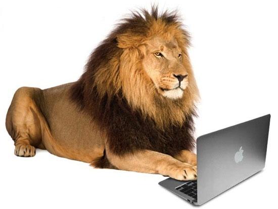 Укрощаем цены на ноутбуки купить ноутбук на любой вкус для учебы, работы, творчества и развлечений мощные, быстрые и умные устройства