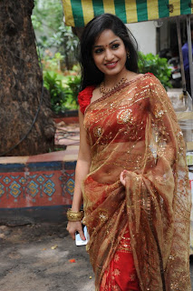 madhavi latha  Pictures in saree 10.jpg