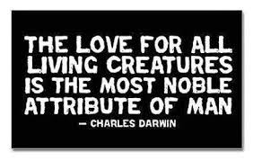 Love All Creatures