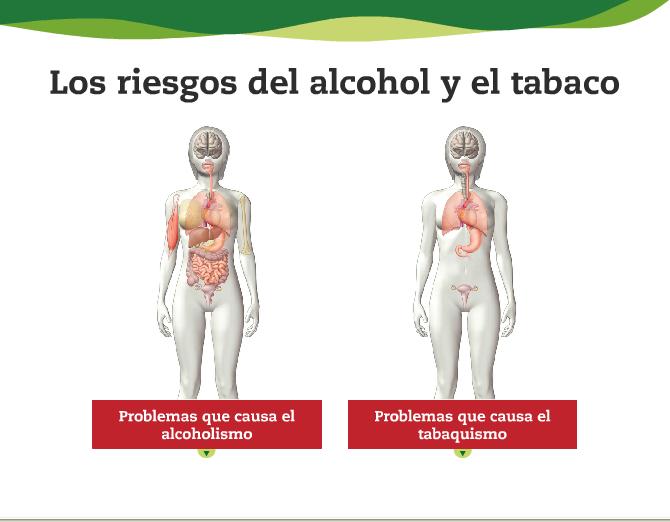 La reconstitución del organismo del alcoholismo