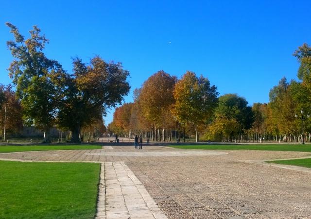 jardin palacio aranjuez