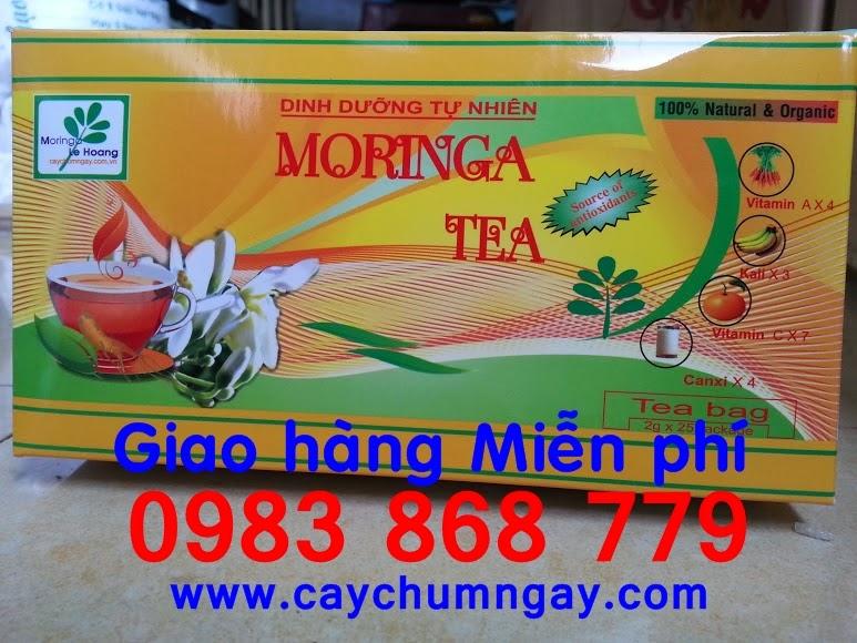 Trà Chùm ngây (Moringa tea) có tại Việt Nam
