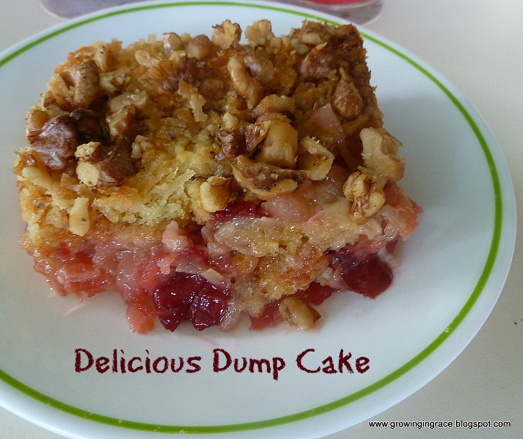 This Dump Cake is quick and easy to make and full of fruit.