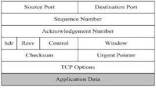 Format Segmen TCP