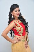 yamini bhaskar latest glam pics-thumbnail-16