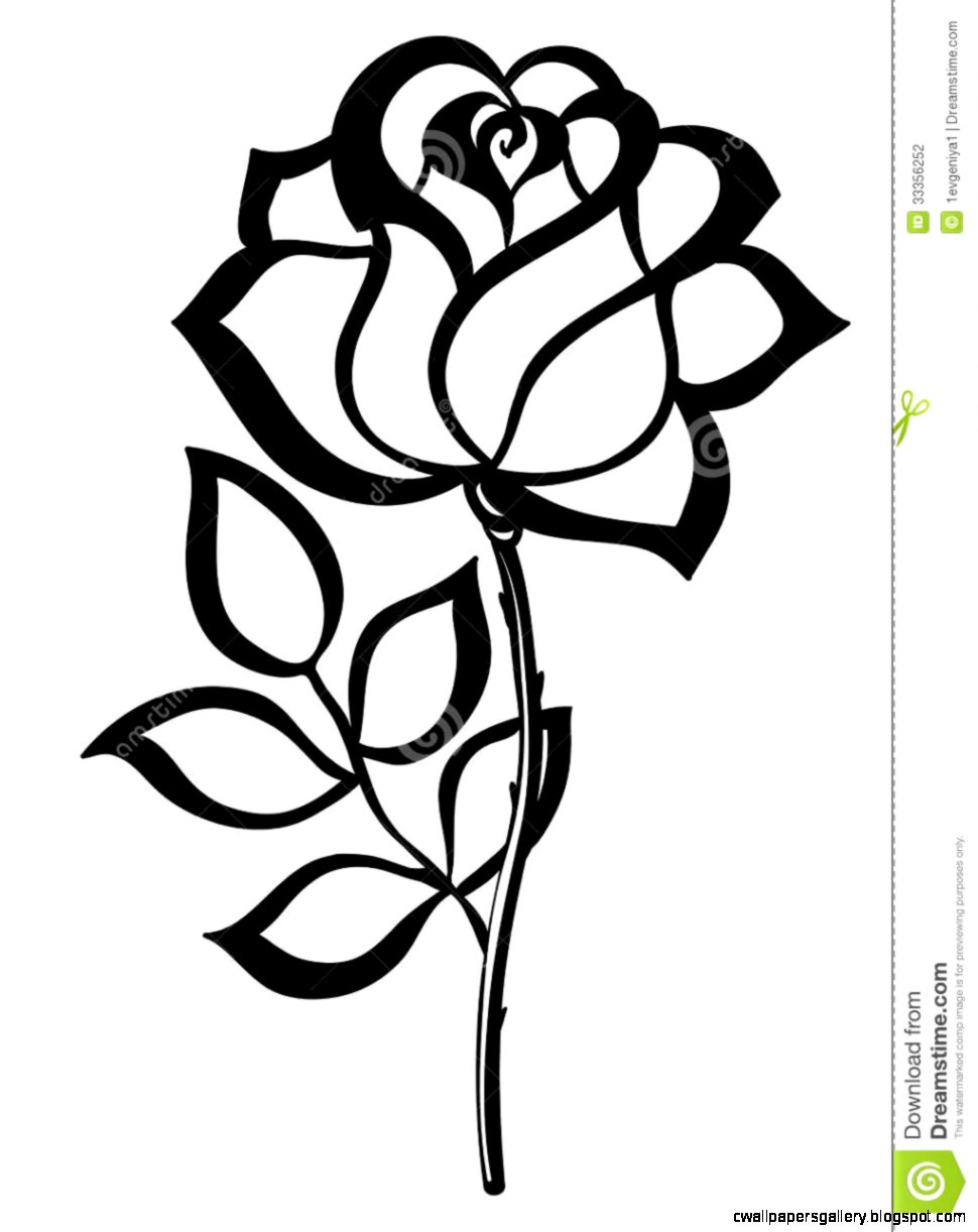 Rose Outline Clipart   Clipart Kid